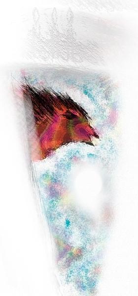 brueghel's bird