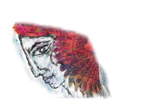 cardinal feather 3