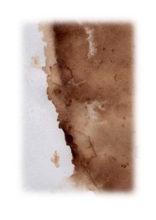 coffee stain 3