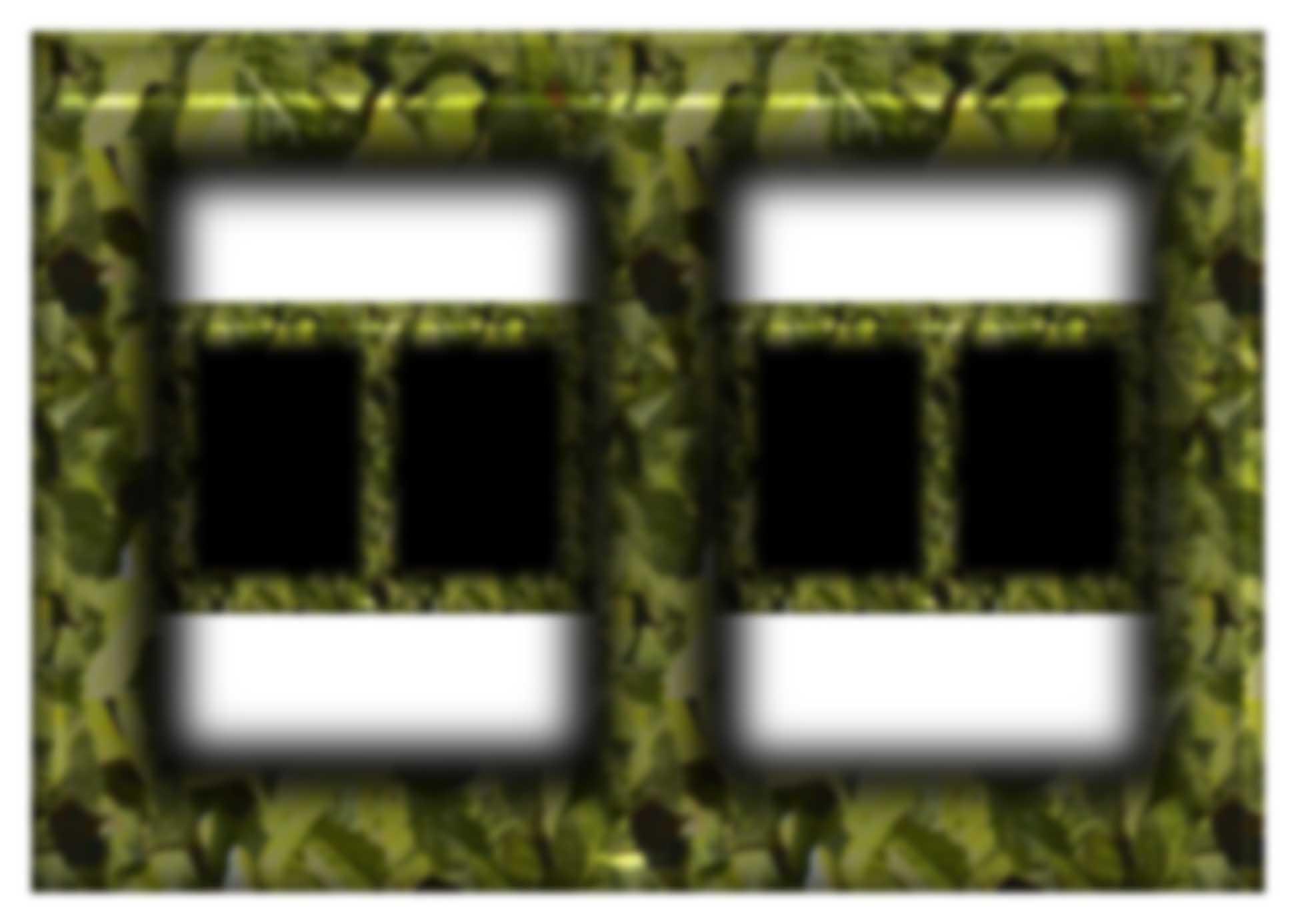 frame configuration black windows