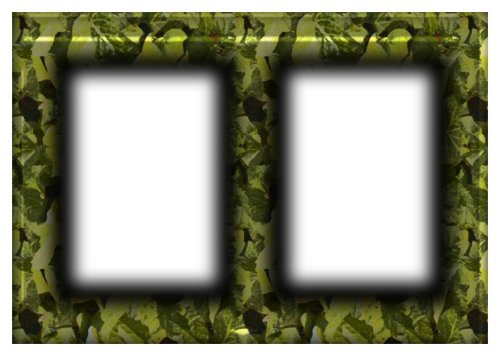 frame sample